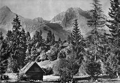Vysoke Tatry, Slovakia Heart Of Europe, Old Photography, Album, Czech Republic, Old Photos, Folk Art, Flora, Cabin, History