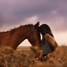 horse