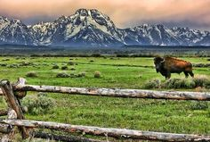 Front range, Grand Tetons National Park, Wyoming