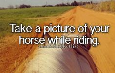 It wasn't my horse, but I took a picture that looked very similar to this.