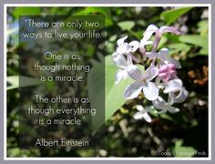 Great Albert Einstein Quote about Living Life! Words Quotes, Wise Words, Life Quotes, Sayings, Uplifting Thoughts, Quality Quotes, Albert Einstein Quotes, Great Words, Live Life
