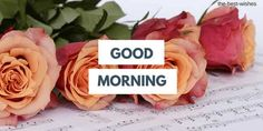 Good Morning Wishes With Red Rose bouquet Pictures. Good Morning Msg, Good Morning Coffee, Good Morning Messages, Morning Quotes, Morning Gif, Good Morning Beautiful Flowers, Good Morning Roses, Latest Good Morning Images, Good Morning Images Download
