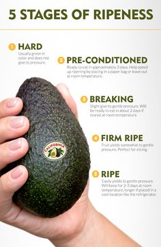 Everything you need to know about choosing the right California Avocado - every time.