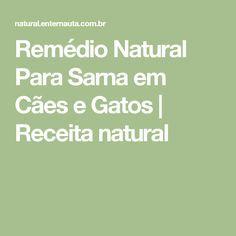 Remédio Natural Para Sarna em Cães e Gatos | Receita natural