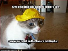 I's the cat what builds teh boat...