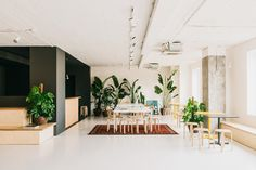 This Barcelona co-working space by MESURA is a delightful expression of what can be achieved when combining simple design elements and good space planning. Showroom Design, Coworking Space, Building Columns, Black Painted Walls, Leather Butterfly Chair, Interior Design Courses Online, White Concrete, Co Working, Office Interiors