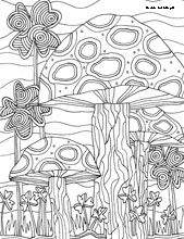 Creative Haven AMAZON ANIMALS A Coloring Book With A Hidden Picture Twist By Jan Sovak COLORING