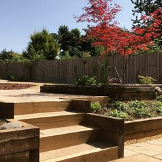 Sleeper/Sandstone steps leading up to paving & pond Sleeper Steps, Terraced Backyard, Bespoke Design, Backyards, Pond, Garden Design, Landscape, Plants, Custom Design