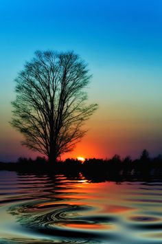 Sunset Reflection Ontario Canada Amazing Pictures