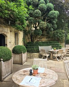 Our lunch spot today.. a bit chilly .. #england #oldparsonagehotel #oxford #endoftheholiday #headinghome #16century #boxwood #