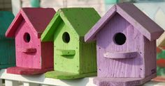 Loving this idea, for colored bird houses.  Skittles.  Make a birdhouse out of a coffee can.  Instructions.  #wm
