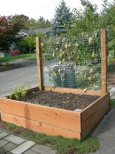 Planter Box Ideas- great for climbing veggies.