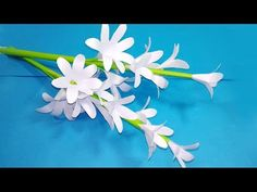 Awesome flowers with color paper! Nice tuberose flowers with color paper, look like a real flowers. Simple Paper Flower, Paper Flowers Craft, How To Make Paper Flowers, Crepe Paper Flowers, Paper Flower Backdrop, Flower Crafts, Paper Vase, Diy Paper, Paper Crafting