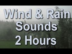Deep in a pristine forest, a rainstorm pelts trees and moss-covered land. The sound is so relaxing you'll find your mind calm in a matter of moments. Best Meditation, Meditation Music, Sound Of Rain, Rain Sounds, Health And Wellbeing, Mental Health, Nature Sounds, Wind And Rain, Music Heals