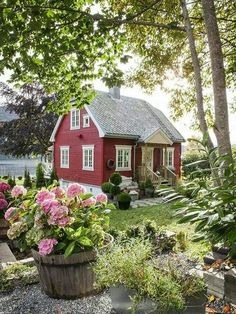 Little Cottage in the Summer