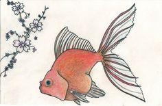 Fantail Goldfish.