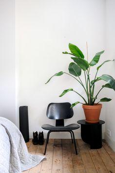 Living Room Decor List, Living Room Mirrors, Home Gym Decor, Cheap Home Decor, Interior House Colors, Home Interior Design, Urban Decor, Entrance Decor, Contemporary Home Decor