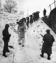 German prisoners, some of them wearing coveralls for camouflage in the snow, are herded by Allied troops. (In close fighting, U.S. troops also used snow-camouflage suits.)