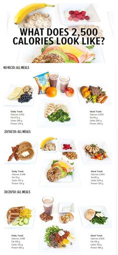 what does 2 500 calories look like
