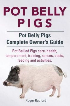 Pot Bellied Pigs care health temperament training senses costs feeding and activities. Potbelly Pig Care, Mini Potbelly Pigs, Baby Pigs, Pet Pigs, Raising Pot Belly Pigs, Pig Feed, Teacup Pigs, Pig Farming, Mini Farm