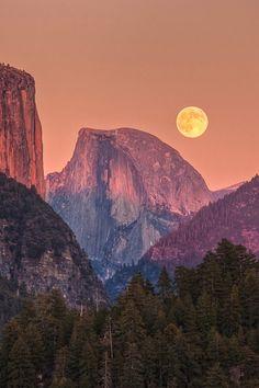 Beautiful World, Beautiful Places, Beautiful Moon, Beautiful Beautiful, Beautiful Scenery, Amazing Places, Yellowstone Nationalpark, Moon Rise, Sky Moon