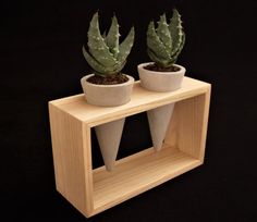 Concrete mini planters in wooden frame of solid chestnut wood for mini plants, geometric cone planters, Comfort gift for home decoration