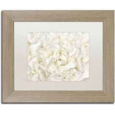 Trademark Fine Art 'White Peony Flower' Canvas Art by Cora Niele, White Matte, Birch Frame, Size: 16 x 20, Multicolor