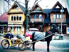 Ready for the ride - Zakopane, Tatra Mountains