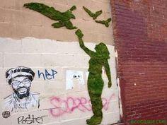 Haz tu propio graffiti de musgo