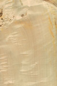 Mappa (Pappel) Maser   Furnier: Holzart, Mappa, Blatt, braun, hell, #Holzarten #Furniere #Holz