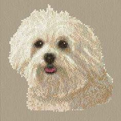 Maltese cross stitch pattern.