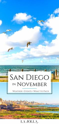 Learn what it's really like to visit San Diego in November. I live here and share tips for what to pack, weather, events, things to do, and hotel advice. Learn more here at La Jolla Mom Visit San Diego, San Diego Zoo, Family Vacation Destinations, Vacations, La Jolla San Diego, Rancho Valencia, San Diego Hotels, Fleet Week, Hotel Del Coronado