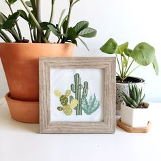 Potted plant cross-stitch design 🌿 via @thestrandedstitch Modern Cross Stitch, Cross Stitch Designs, Embroidery Thread, Cacti, Potted Plants, Photo And Video, Instagram, Cactus Plants, Pot Plants