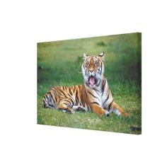 $$$ This is great for          	23899167 GALLERY WRAP CANVAS           	23899167 GALLERY WRAP CANVAS We provide you all shopping site and all informations in our go to store link. You will see low prices onShopping          	23899167 GALLERY WRAP CANVAS today easy to Shops & Purchase Online - ...Cleck Hot Deals >>> http://www.zazzle.com/23899167_gallery_wrap_canvas-192784512810490245?rf=238627982471231924&zbar=1&tc=terrest