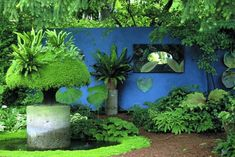 Little and Lewis gardens - Google Search