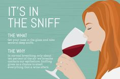 The Importance of Sniffing Wine