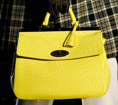 Mulberry Fall 2013 Handbags 29 picture