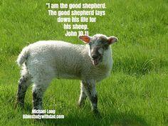 God is the good shepherd he lays down his life for us. Credit to #saviorfeed #biblelockscreens #biblestudywithdad