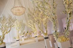 @grace_ormonde @wedding_style | Special Events