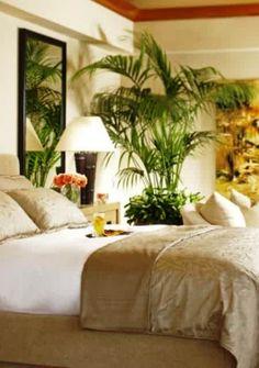 Bright Tropical Bedroom 2014