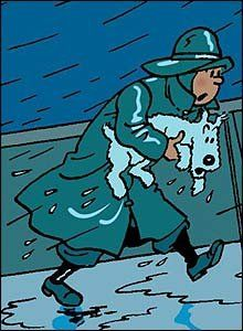 Tintin and Snowy drenched on a ship's deck Quick Et Flupke, Tin Tin Cartoon, Captain Haddock, Herge Tintin, Comic Art, Comic Books, Old Children's Books, Ligne Claire, Wire Fox Terrier