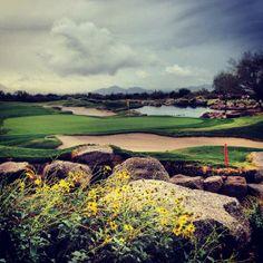 Cloudy, rainy day at Grayhawk Golf Course in Scottsdale, AZ.