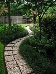 Shaded garden with curved walkway.