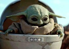Ver Star Wars, Star Wars Meme, Star Wars Art, Images Star Wars, Star Wars Pictures, Yoda Drawing, Yoda Images, Chibi, Baby Groot