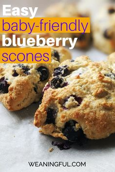 This scones recipe makes a great breakfast, brunch or snack idea when you don't want to spend too much time in the kitchen cooking. Learn how to make scones from scratch and how to vary them for your baby, toddler or older kid.