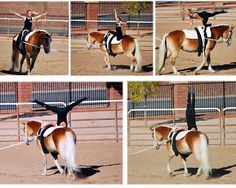 2013 Regional 1 Equestrian Vaulting Championships. Trot Freestyle