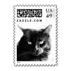 Striking Black Cat, Fierce! postage stamps
