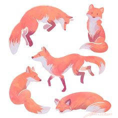 "zandraart: "" some foxes ""                                                                                                                                                      More"