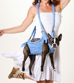 Puppoose Crochet Dog Carrier- Blue this is hilarious. that dog looks uncomfortable. Dog Bag, Dog Purse, Poor Dog, Dog Clothes Patterns, Dog Carrier, Pet Carriers, Dog Sweaters, Dog Crate, Diy Stuffed Animals