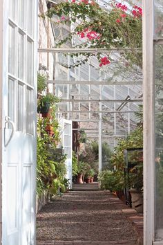 Among the oldest in America, the Lyman Estate Greenhouses were first built in 1798; Waltham, MA -  Gardenista